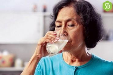Sữa và dinh dưỡng cho người cao tuổi